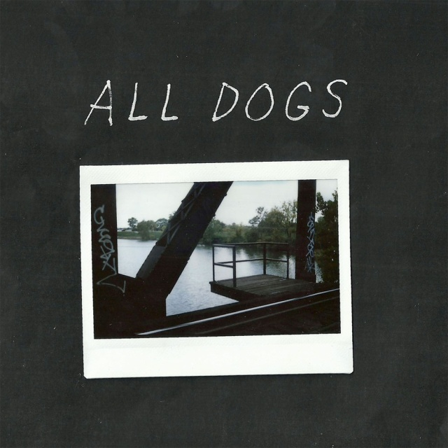 All Dogs 7
